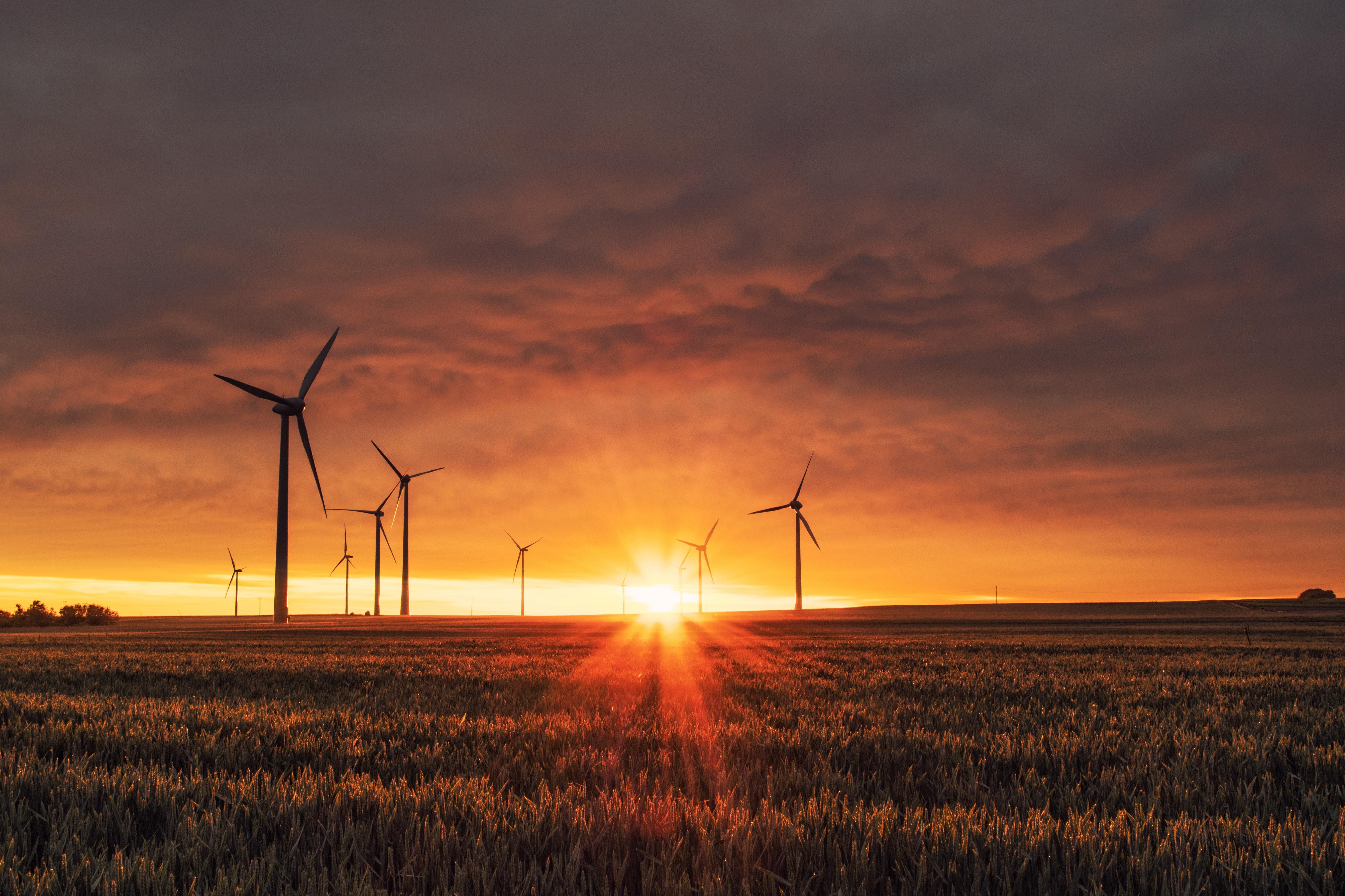 Ausblick 2020 - Teil 5: Strahlende Aussichten für Solarenergie